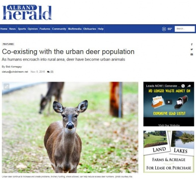 Albany Herald - Coexisting with the Urban Deer Population