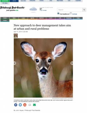 New approach to deer management