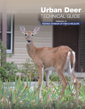 Resource library community deer advisor a technical guide developed by the indiana division of fish and wildlife sciox Choice Image